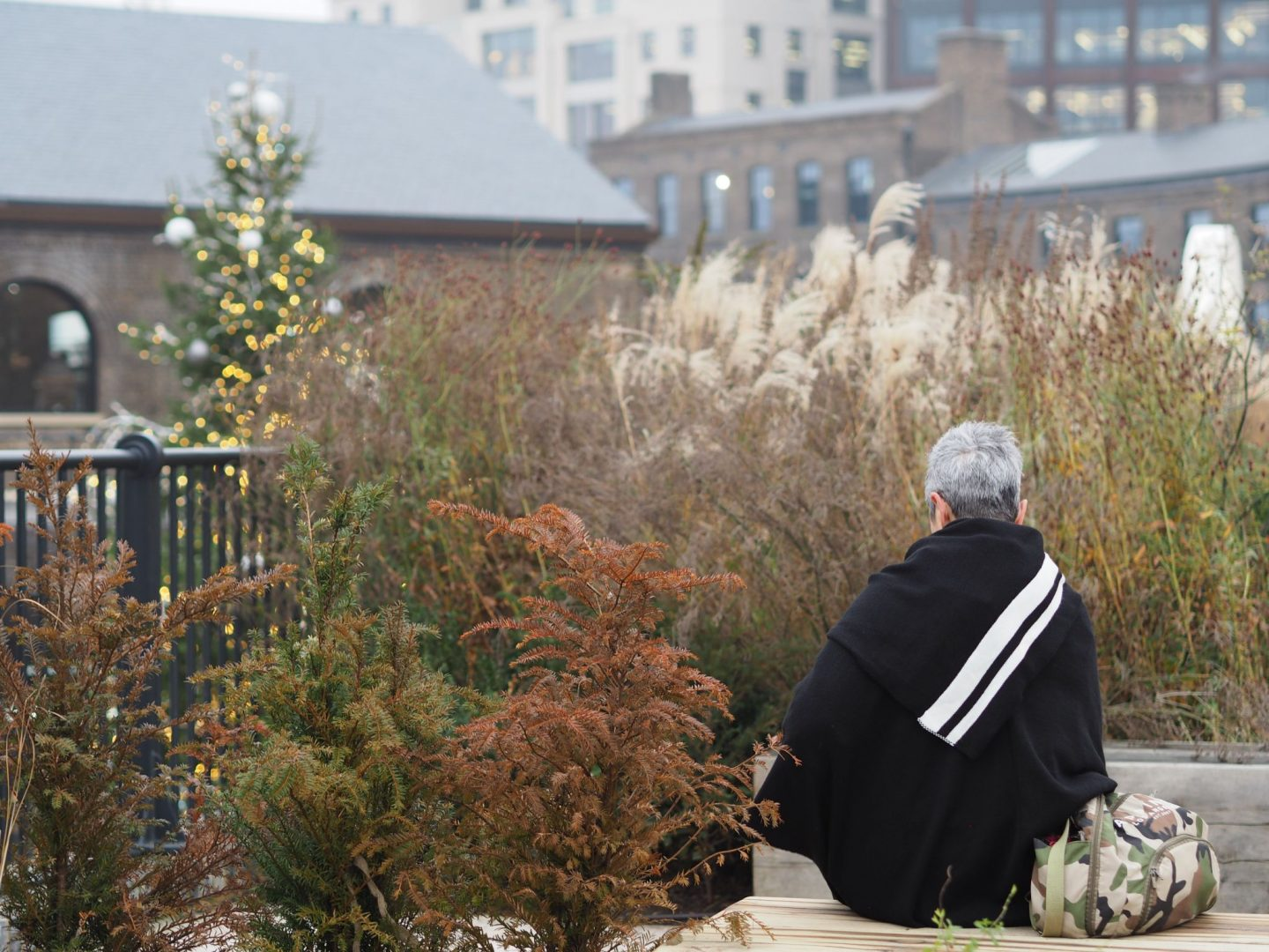 Coal Drops Yard, Highline, grasses, Mary Middleton for Hello Peagreen