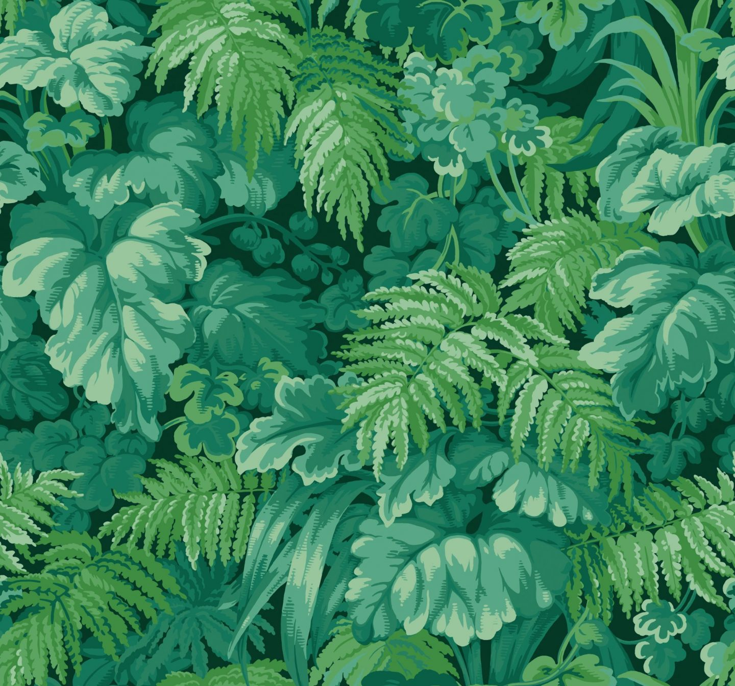 Green Wallpaper, the greenery edit, leafy wallpaper, jungle wallpaper, foliage, Royal Fernery, Cole & Son