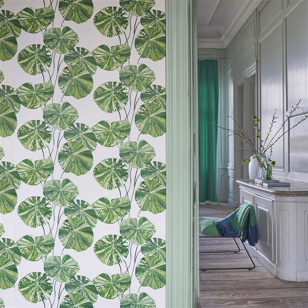 Green Wallpaper, the greenery edit, leafy wallpaper, jungle wallpaper, foliage wallpaper, Brahimi Leaf, nasturtium leaves