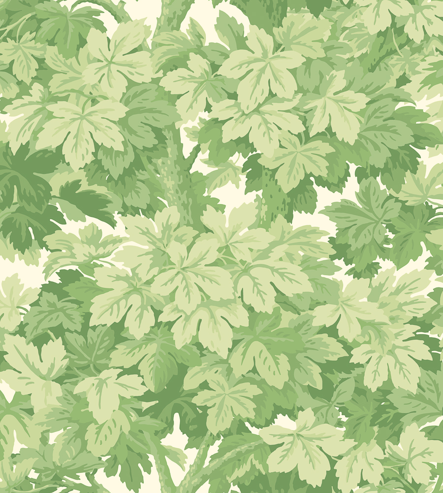 Green Wallpaper, the greenery edit, leafy wallpaper, jungle wallpaper, foliage wallpaper, Great Vine wallpaper, Cole & Son